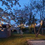 lichtguirlande-warm-wit-licht-10-meter-726