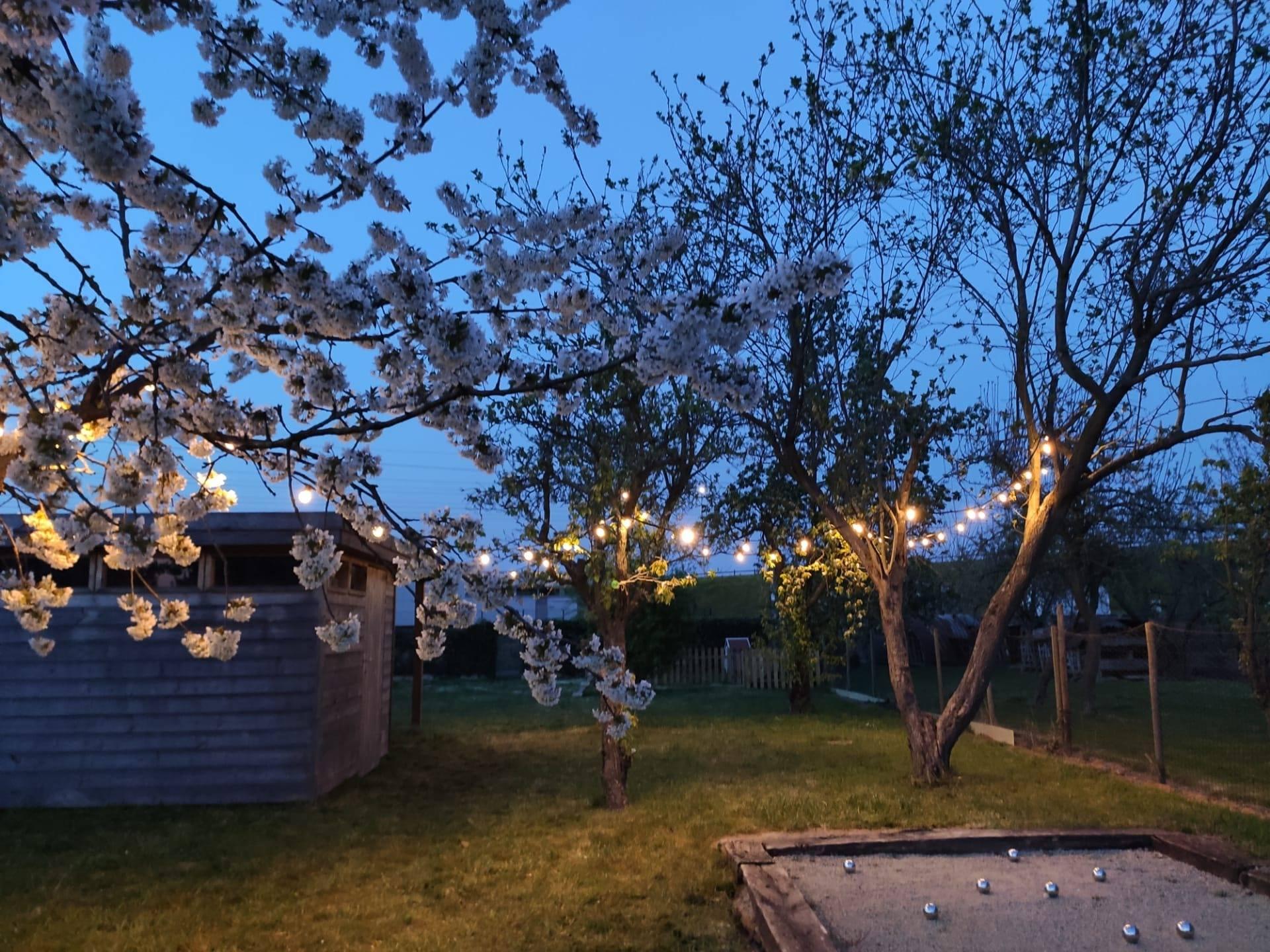 lichtguirlande-warm-wit-licht-20-meter-3899